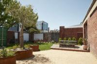 Garden — WOW Pictures Fitzroy